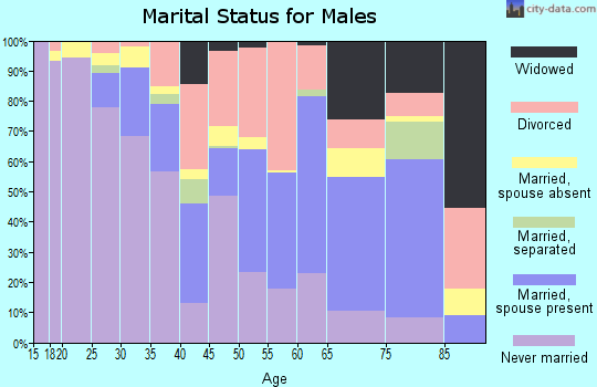 Zip code 70501 marital status for males