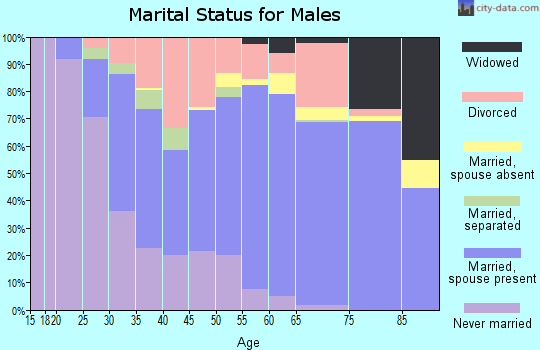 Zip code 71118 marital status for males