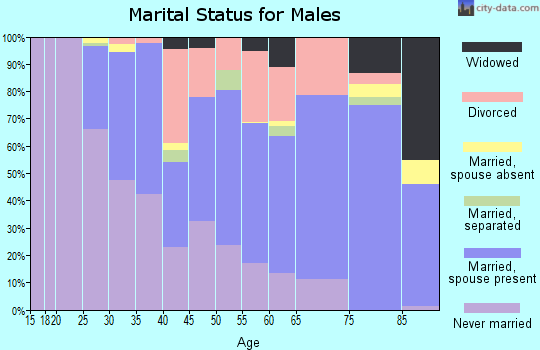 Zip code 71201 marital status for males