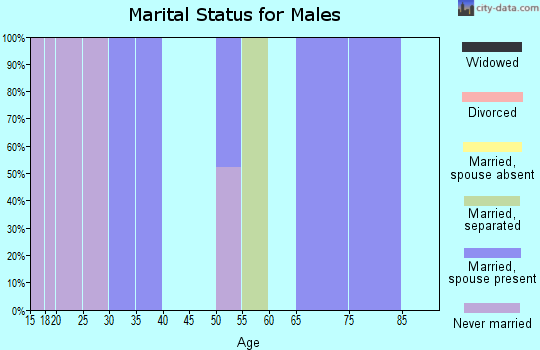 Zip code 71276 marital status for males