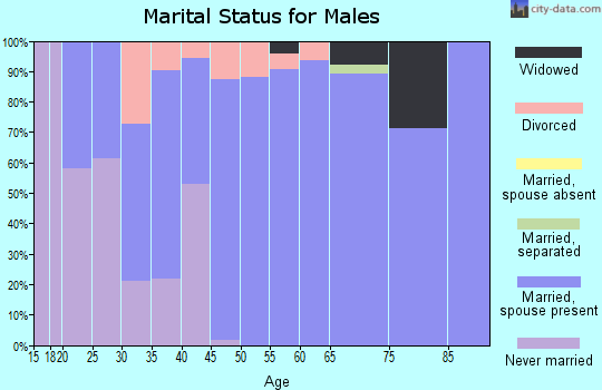 Zip code 71280 marital status for males