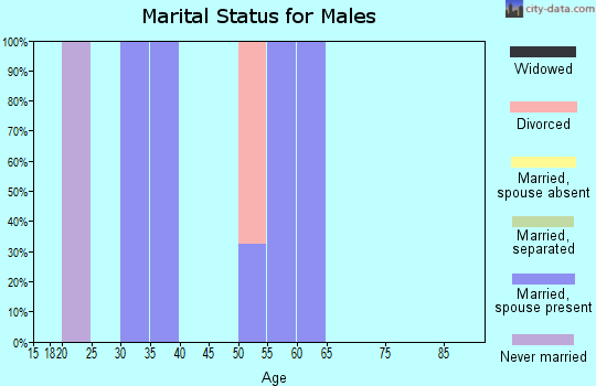 Zip code 71441 marital status for males