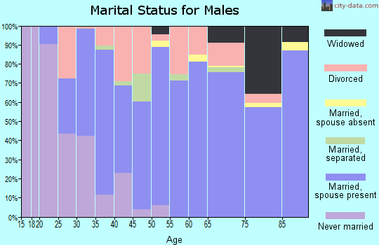 Zip code 71822 marital status for males