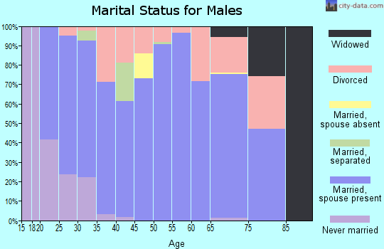 Zip code 71837 marital status for males
