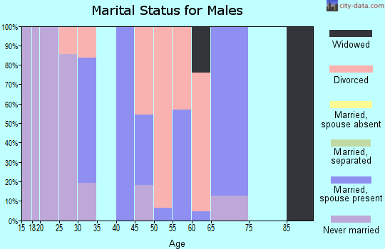 Zip code 72060 marital status for males