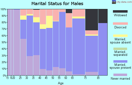 Zip code 72211 marital status for males
