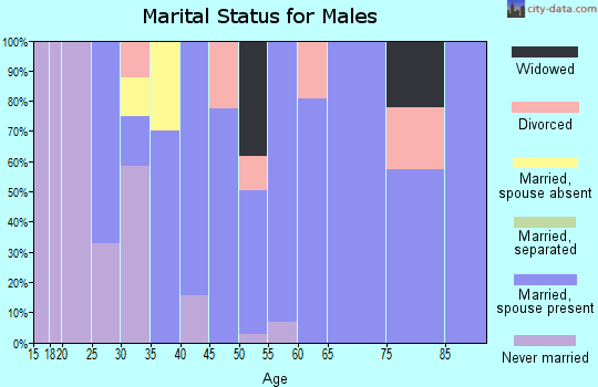 Zip code 72438 marital status for males