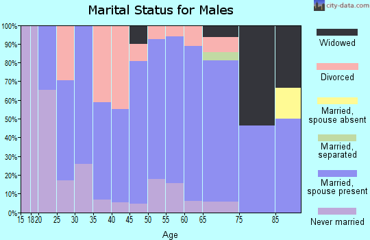 Zip code 72473 marital status for males