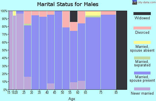 Zip code 73093 marital status for males