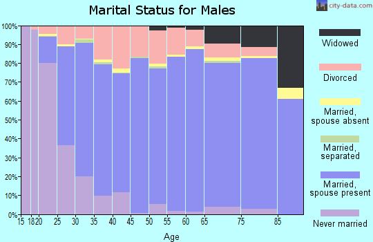 Zip code 73099 marital status for males