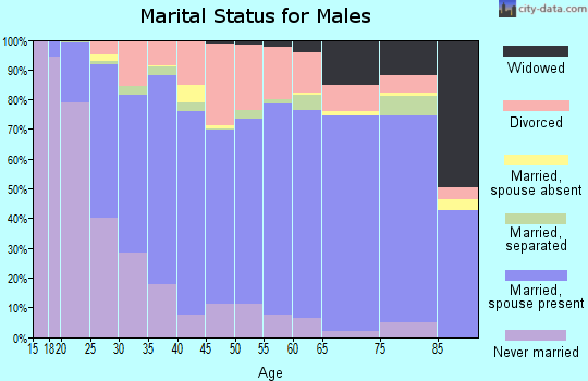 Zip code 73160 marital status for males
