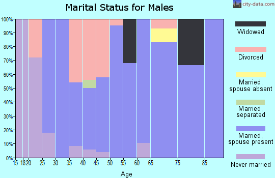 Zip code 73432 marital status for males