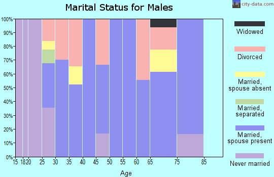 Zip code 73567 marital status for males