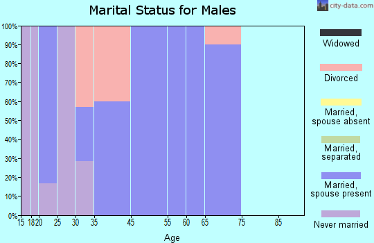Zip code 74335 marital status for males