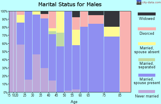 Zip code 74450 marital status for males