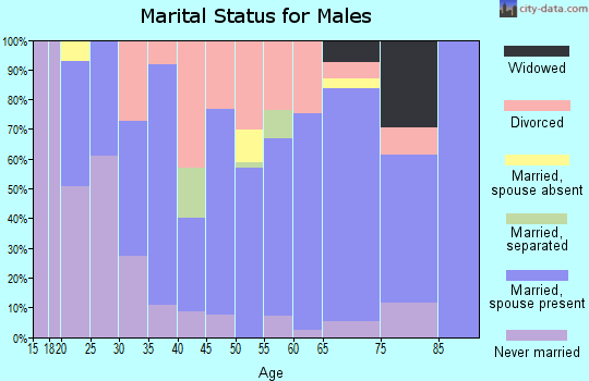 Zip code 74470 marital status for males
