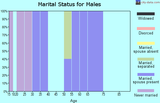 Zip code 74576 marital status for males