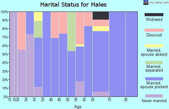 Zip code 74756 marital status for males