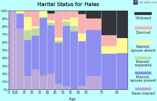 Zip code 74937 marital status for males