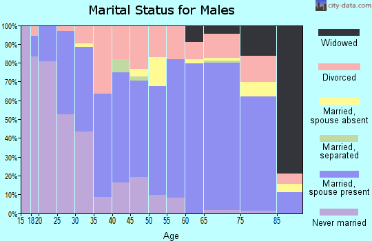 Zip code 74953 marital status for males