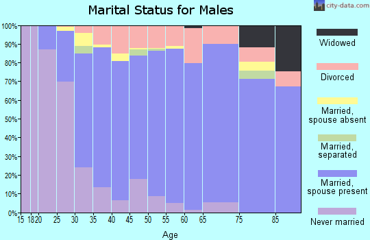 Zip code 75024 marital status for males