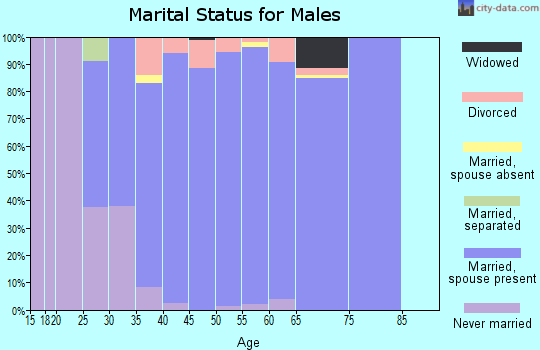 Zip code 75078 marital status for males