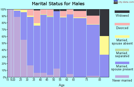 Zip code 75087 marital status for males