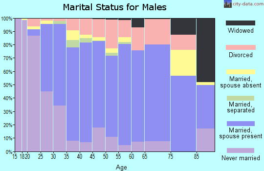 Zip code 75104 marital status for males