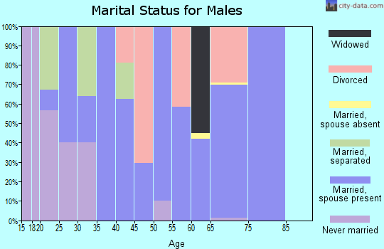 Zip code 75163 marital status for males