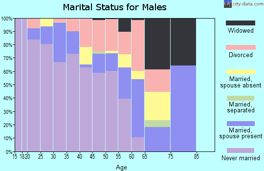 Zip code 75201 marital status for males