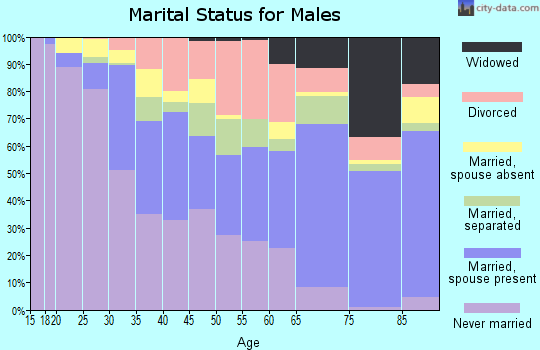 Zip code 75216 marital status for males