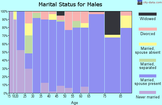 Zip code 76050 marital status for males