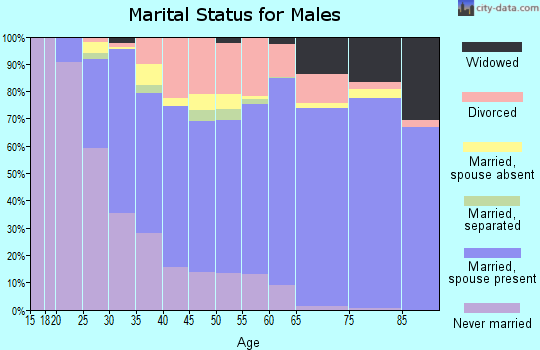 Zip code 76133 marital status for males