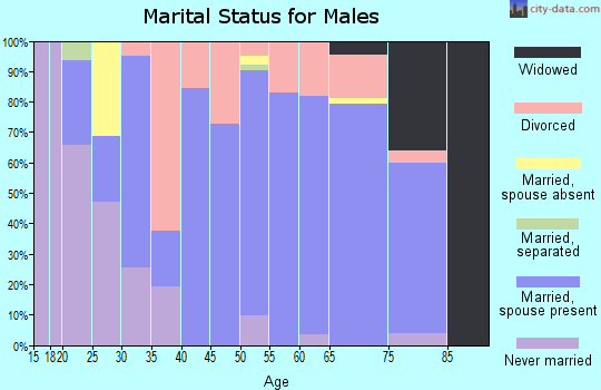 Zip code 76462 marital status for males