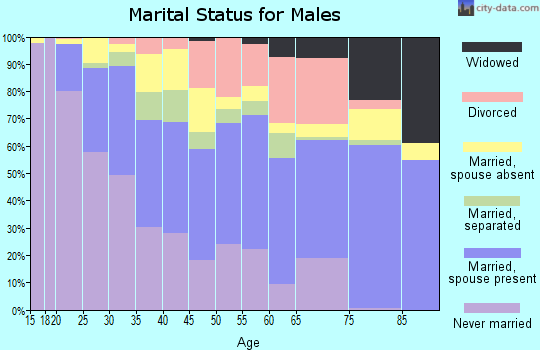 Zip code 77036 marital status for males