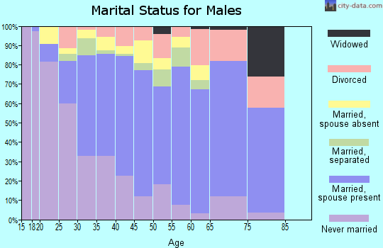 Zip code 77038 marital status for males