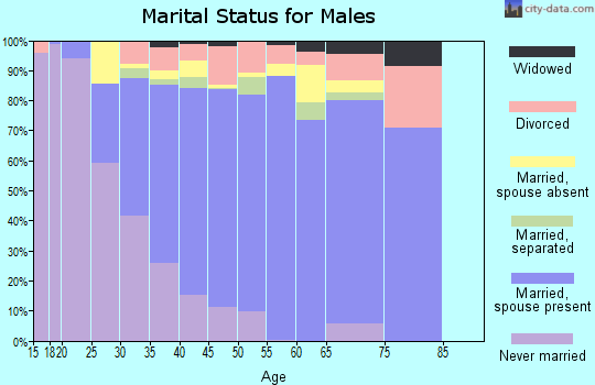 Zip code 77066 marital status for males