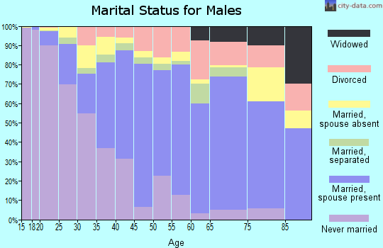 Zip code 77072 marital status for males