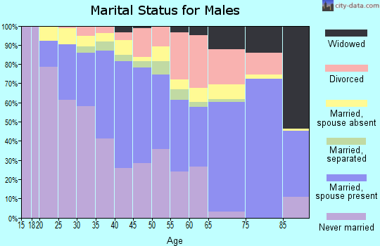 Zip code 77074 marital status for males
