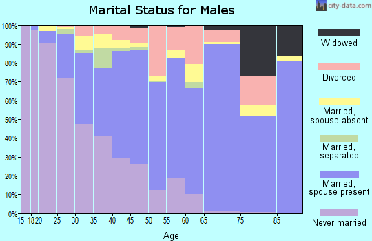 Zip code 77082 marital status for males