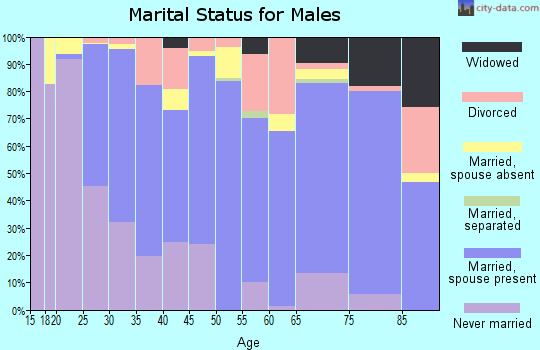 Zip code 77437 marital status for males
