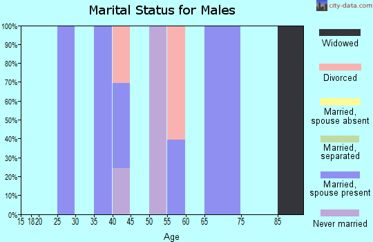 Zip code 77475 marital status for males
