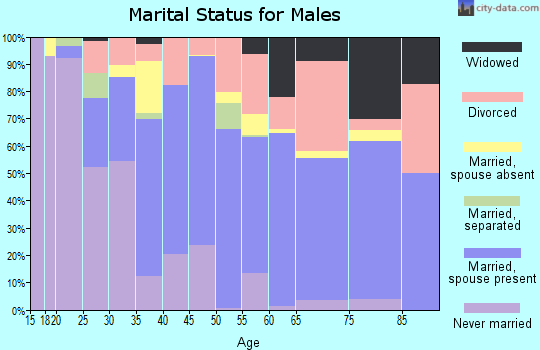 Zip code 77541 marital status for males