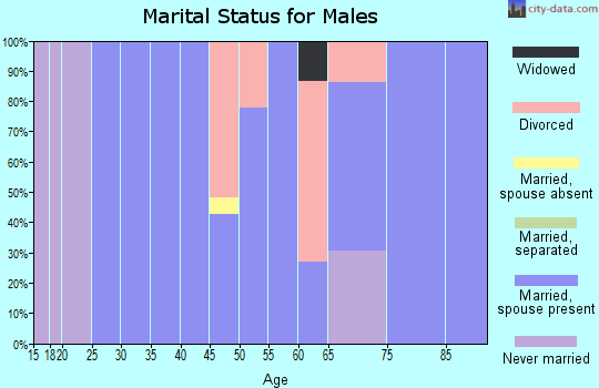 Zip code 77564 marital status for males