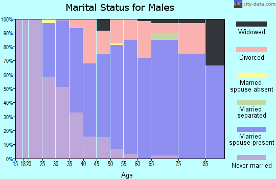 Zip code 77565 marital status for males