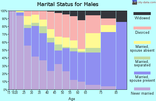 Zip code 77583 marital status for males