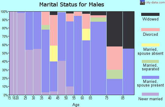 Zip code 77861 marital status for males