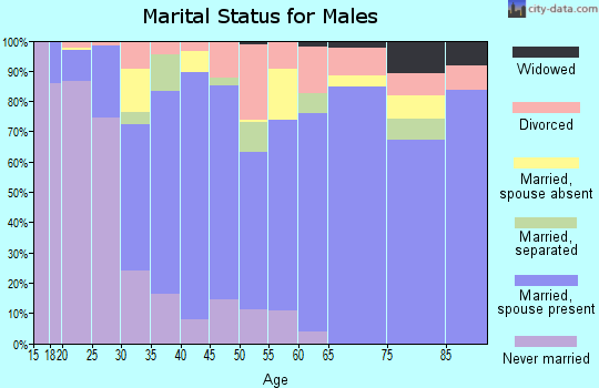Zip code 77979 marital status for males