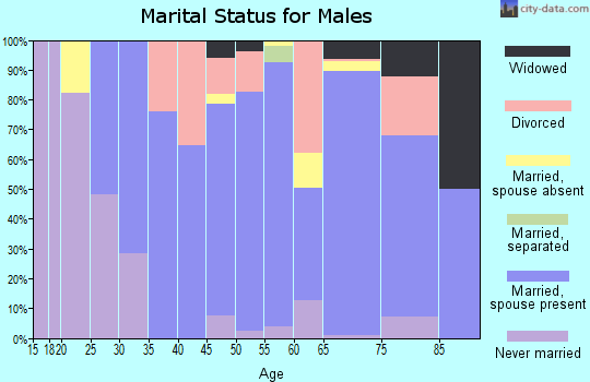 Zip code 77984 marital status for males