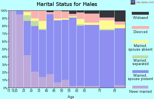 Zip code 78006 marital status for males